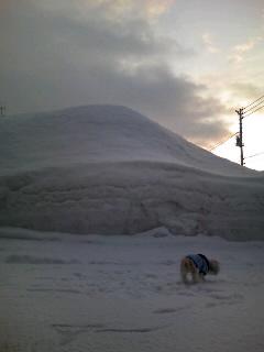 冬・雪の山